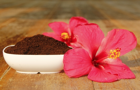 coffee grounds: Coffee grounds for spa with red flowers Stock Photo