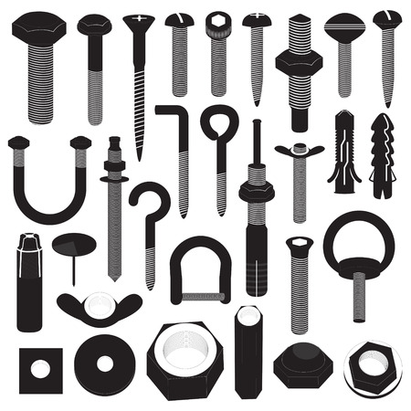 screw head: Basic Screws and Nuts Collection