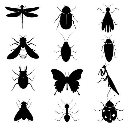 escarabajo: Insectos Siluetas Colección Vectores