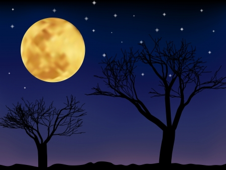 Vector night landscape with trees and moon and stars Illustration
