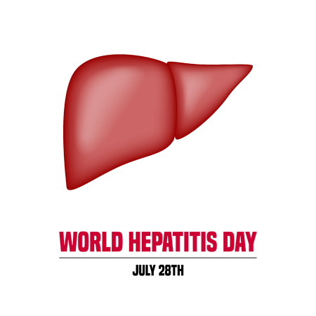 hepatitis prevention: Vector illustration for World Hepatitis Day with the liver and text message Illustration