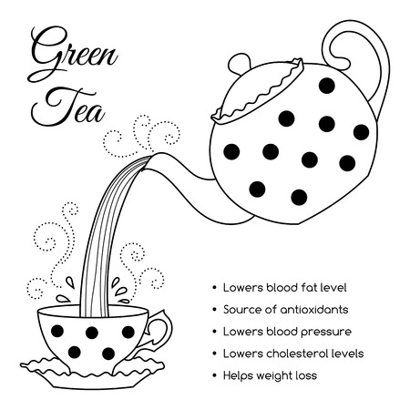Tea properties and health benefits. Hand drawn vector illustration