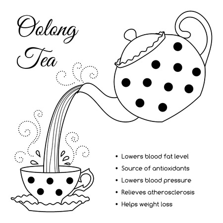 oolong: Tea properties and health benefits. Hand drawn vector illustration