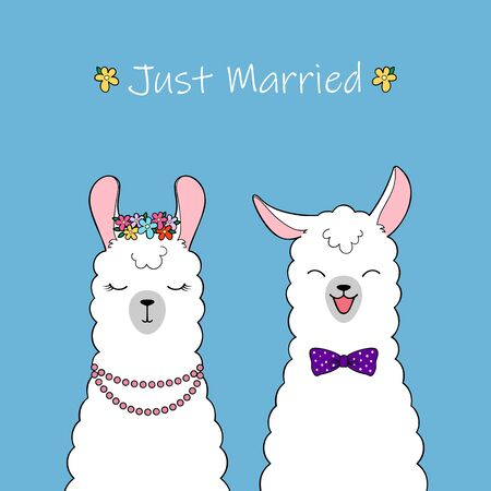Just married. Couple of cute cartoon llamas. Hand drawn illustration Illustration