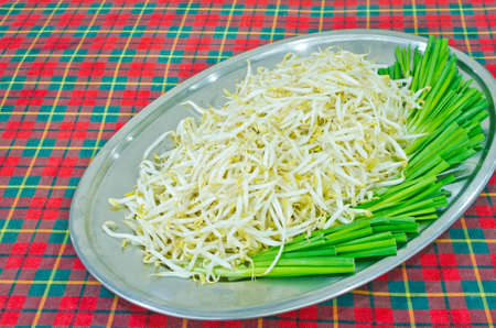 Bean Sprout is preparation serving in tray Stock Photo - 18513435