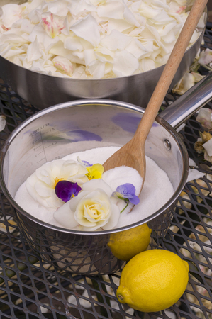 Prepare ingredients for rose jam Reklamní fotografie