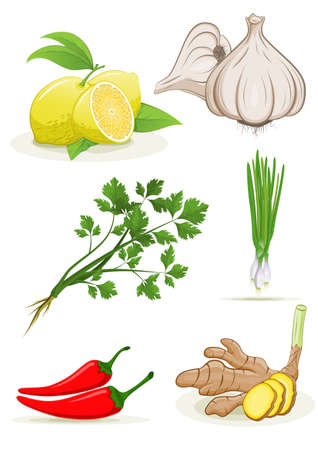 Herbs Lemon pepper garlic ginger Spring onions coriander collection on white background