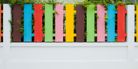 Colorful of Fence   photo