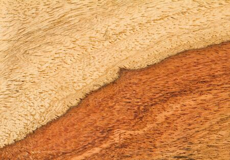 Prawdziwe drewno tekstury Zdjęcie Seryjne