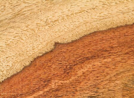 Real wood texture   photo