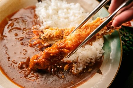 japanese cookery: Curry