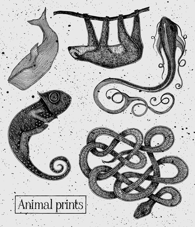 Animals illustrations on the vintage cement background