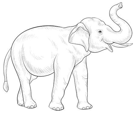 Un'immagine di elefante carino per adulti. Illustrazione di stile di arte di linea per attività rilassante. Design del poster per la stampa. Vettoriali