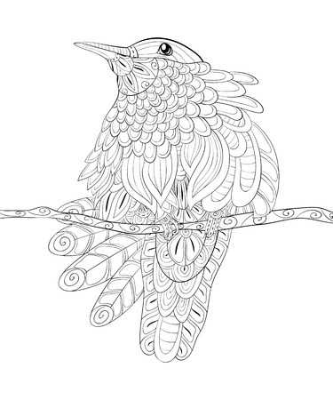A cute bird on the brunch image for adults.Zen art style illustration for relaxing activity.A coloring book,page for print.Poster design. Ilustração