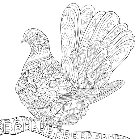 A cute dove on the brunch image for adults.Zen art style illustration for relaxing activity.A coloring book,page for print.Poster design.
