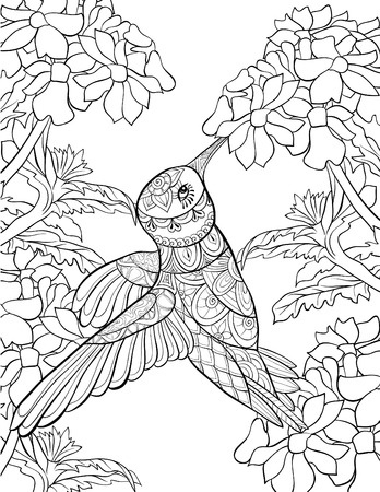 A cute hummingbird gather the flower pollen image for adults.Zen art style illustration for relaxing activity.A coloring book,page for print.Poster design.