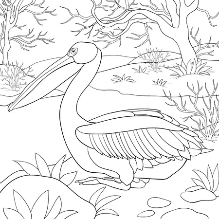 A cute pelican image for relaxing.A coloring book,page for adults and children.Line art style illustration for print.Poster design.