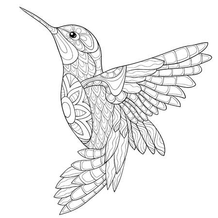 Un colibri mignon avec une image d'ornements pour une activité relaxante. Un livre de coloriage, une page pour les adultes. Illustration de style art zen pour l'impression. Conception de l'affiche. Vecteurs