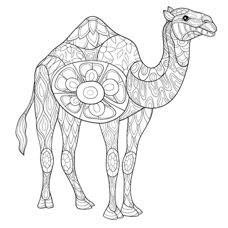 A cute camel with ornaments image for relaxing activity.A coloring book,page for adults.Zen art style illustration for print.Poster design. Vektorgrafik
