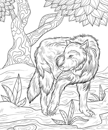 A cute wolf on the nature background with tree,grasses and road image for relaxing activity.A coloring book,page for adults.Zen art style illustration for print.Poster design.