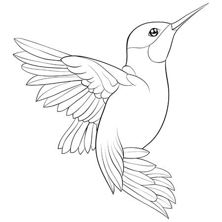 Een schattig vliegende kolibrie afbeelding om te ontspannen. Een kleurboek, pagina voor volwassenen en kinderen. Lijn kunststijl illustratie om af te drukken. Posterontwerp. Vector Illustratie