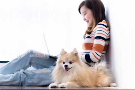 Asia student studying with laptop and dog at home. Education Concept. Asian people