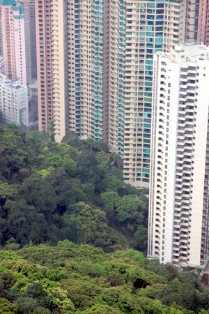 Huge rsidential building and vegetation in an Asian city