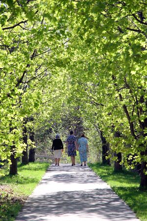 RICHMOND HILL - MAY 5: A walking trail on May 5, 2013 in Richmond Hill, Canada. The city of Richmond Hill, just North of Toronto, has 544 hectares of undeveloped natural area for recreation.