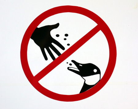 Do not feed ducks sign in a park in Ontario photo