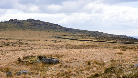 moors: A landscape photograph of the moors of devon and cornwall