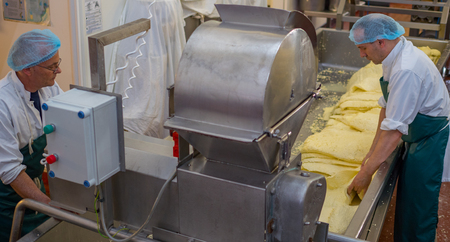 manufactor: Men processing cheese inside a factory using a mill in which they shred blocks of cheese for packing