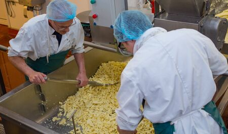manufactor: Two men shovelling cheese strands in a cheese making factory Stock Photo