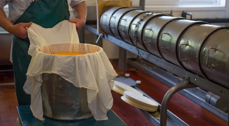Man packing cheese into a metal container ready for processing
