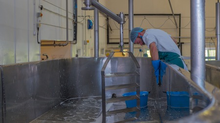 industrial: Man cleaning industrial cheese vat inside a factory