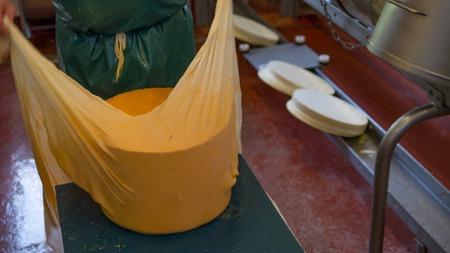 trabajando duro: Un fabricante de queso trabajando duro para preparar su siguiente creaci�n