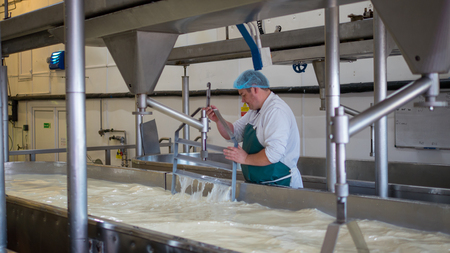 manufactor: A Cheese factory employee looking after a fresh vat of curd in a local factory Stock Photo