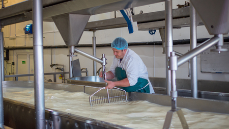 A Cheese factory employee looking after a fresh vat of curd in a local factory Standard-Bild