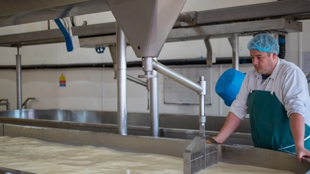 looking after: A Cheese factory employee looking after a fresh vat of curd in a local factory Stock Photo