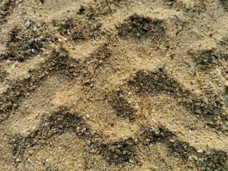 Tire marks on the sand. Surface of the sand.