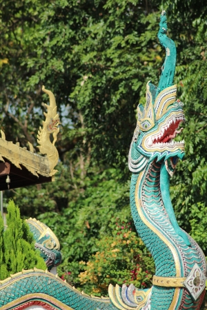 Naga in the temple of Northern Thailand photo
