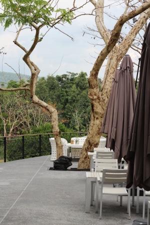 Restaurant Terrace photo