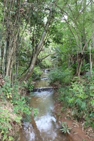 cours d eau: Cours d'eau