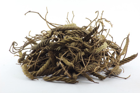 flatulence: Helicteres isora or East Indian screw tree are herb maintain diabetes and reduce blood sugar. Stock Photo