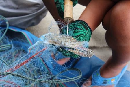 uitpakken: Visser uitpakken krab van sleepnet.