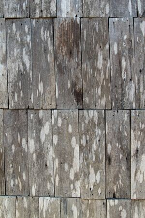 wainscot: Old wooden wall texture background.