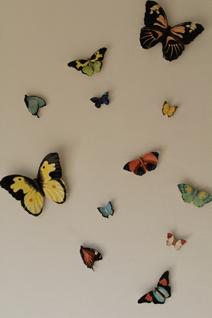 wall decor: Decorative ceramic butterfly on white wall.