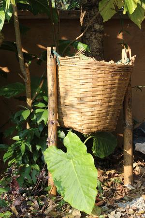 cesto basura: cesta de la basura hecho de bambú en el jardín.