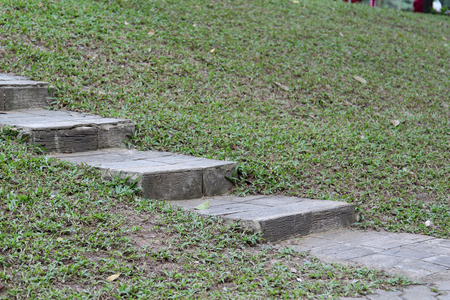 Stone staircase on green grass.