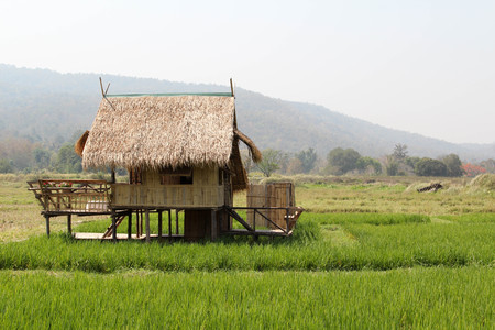 Cottage on the rice field in Huai Tueng Thao, Chiangmai, Northern Thailand.