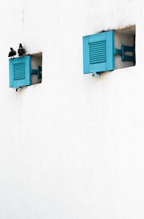 Open blue louver window with 2 pigeons on white concrete  wall. Banco de Imagens